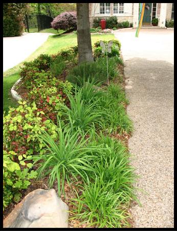Highland Park Landscaping