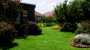 McKinney landscaping for your home