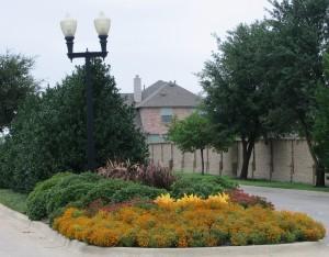 Landscape Dallas