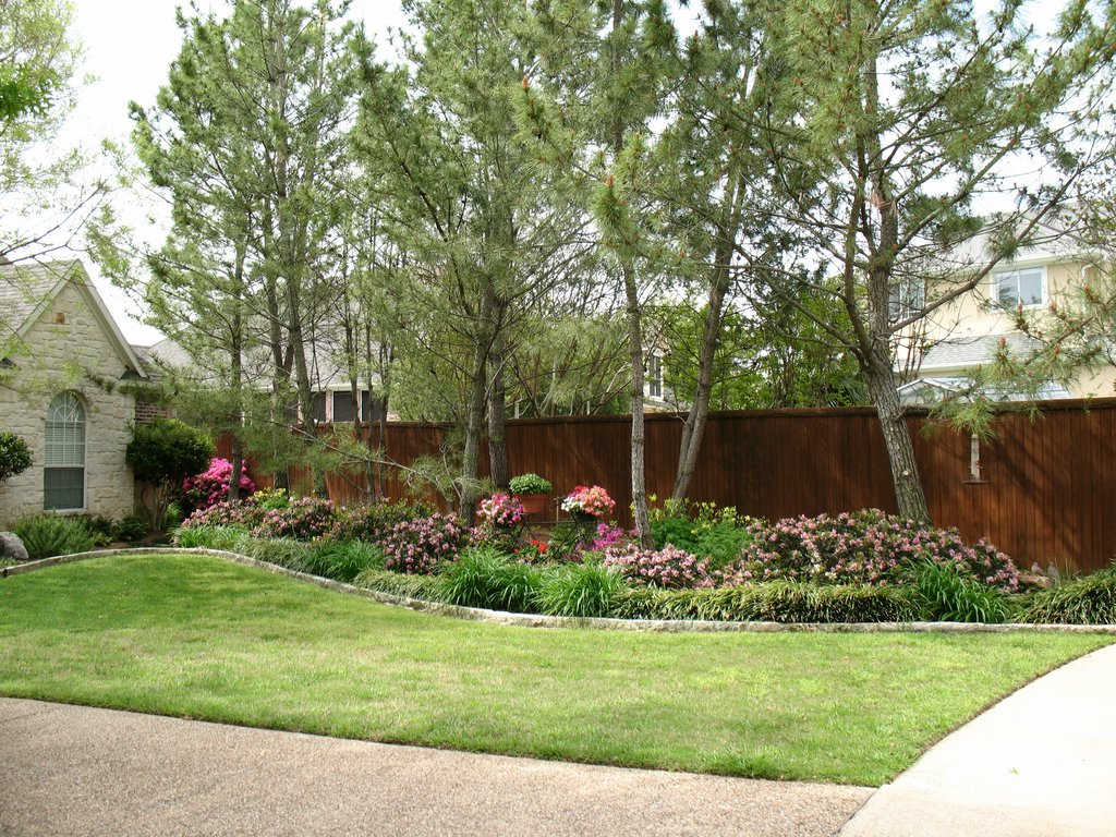 Landscaping flowers