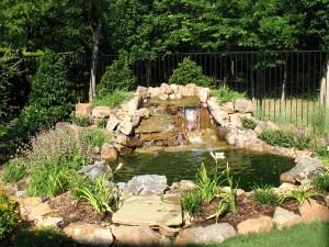 Dallas Landscapers